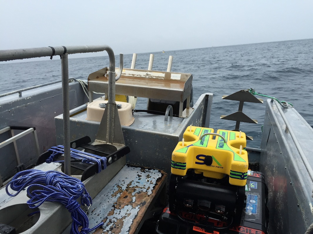underwater habitat inspection with remote operated vehicles (ROV)
